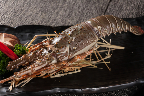 aragosta piatto