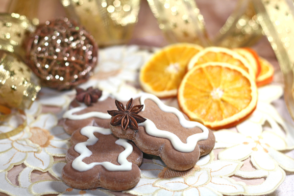 biscotti svedesi zenzero