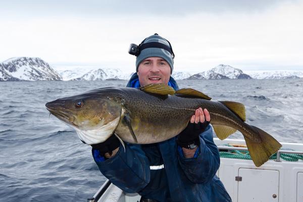 merluzzo pesca norvegia