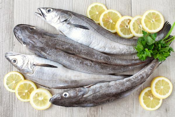 nasello pesce
