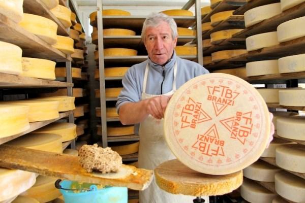 formaggio branzi