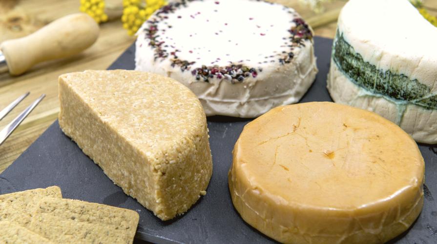 formaggio vegetale ricetta