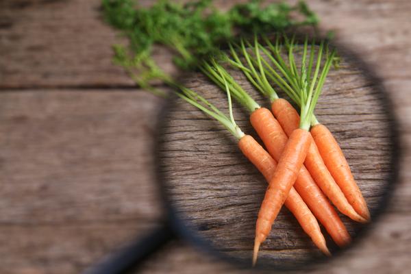 lente analisi carote