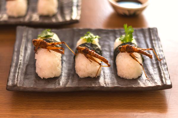 sushi insetti