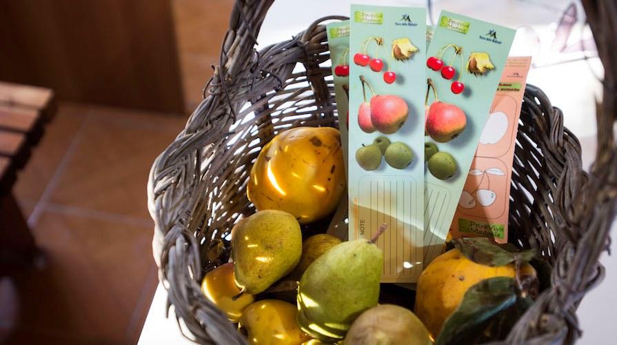 frutti siciliani antichi