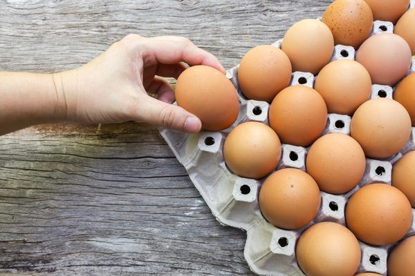 uova da allevamento a terra