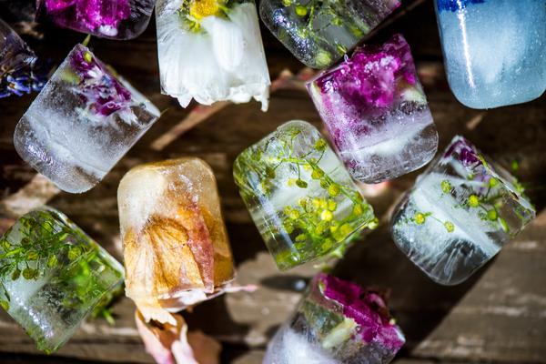 ghiaccio con fiori