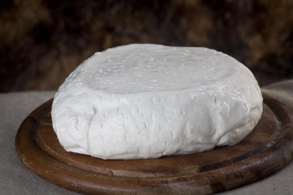 formaggio squacquerone