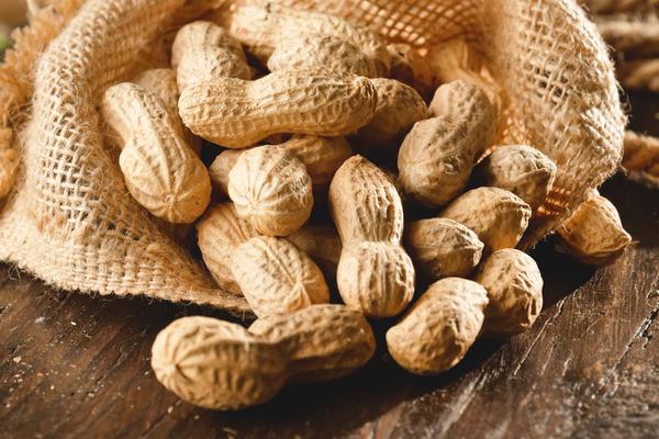 arachidi aflatossine