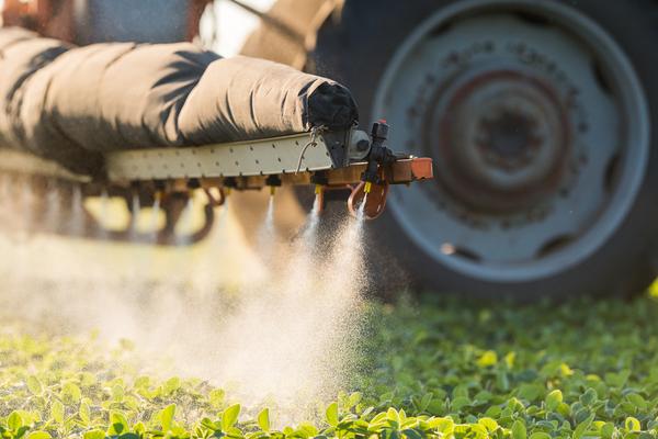 pesticidi e apicultura