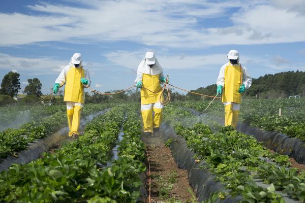 uso pesticidi agricoltura