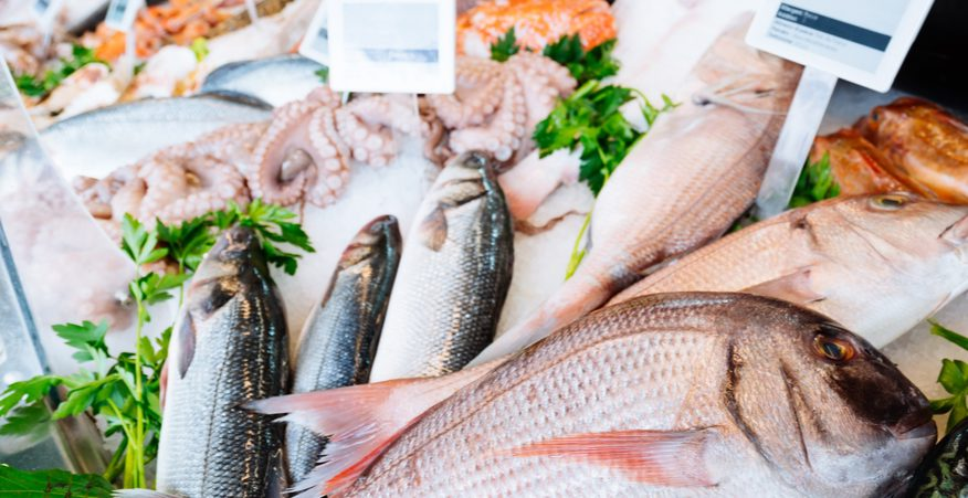 certificazione pesca sostenibile
