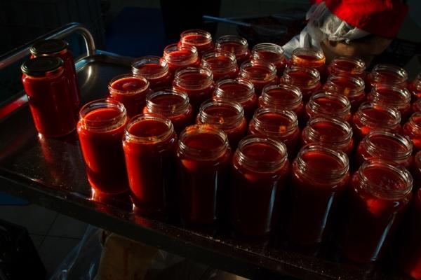 funky tomato il pomodoro pulito