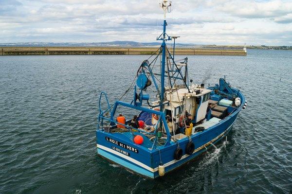 pesca sostenibile certificata