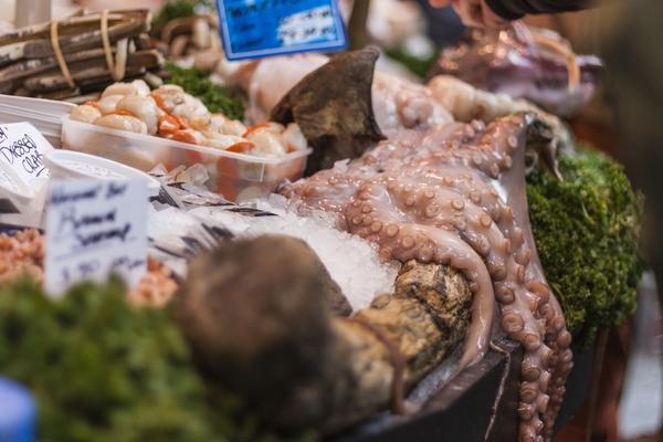 prodotti ittici pesca sostenibile