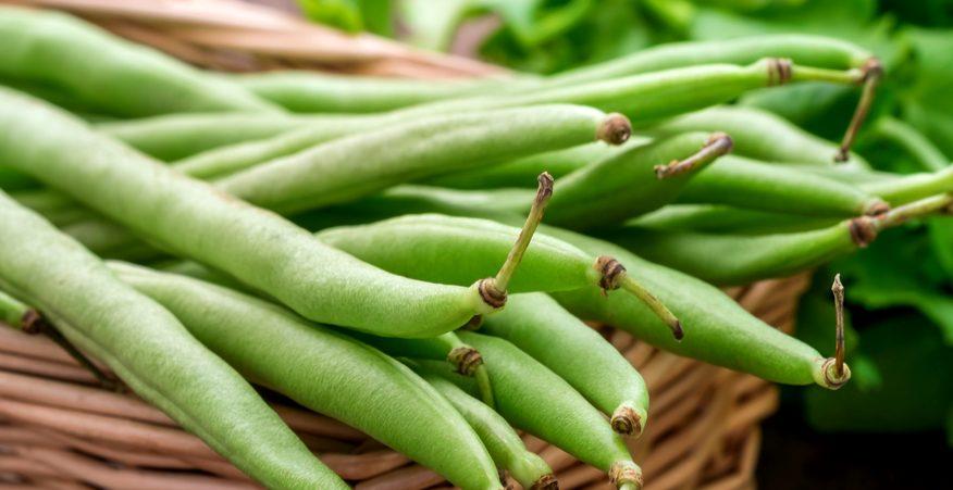 fagiolini proprietà nutrizionali