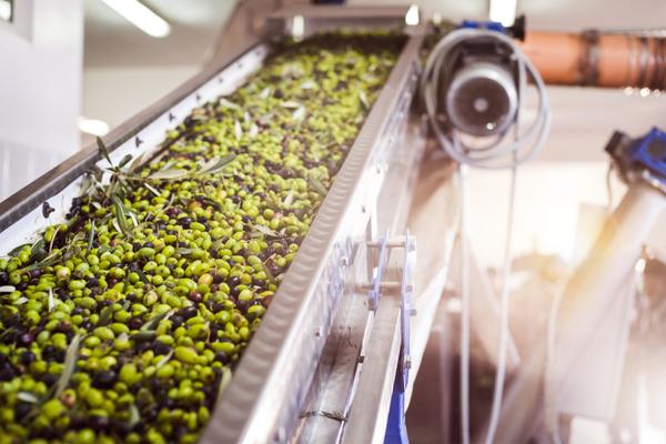 olio d'oliva italiano