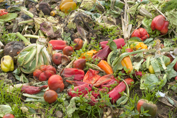 spreco alimentare verdura