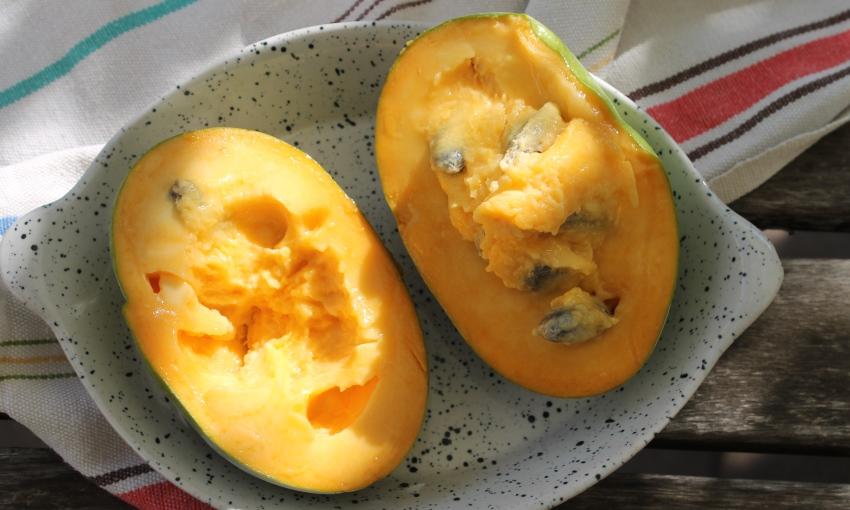 asimina frutto