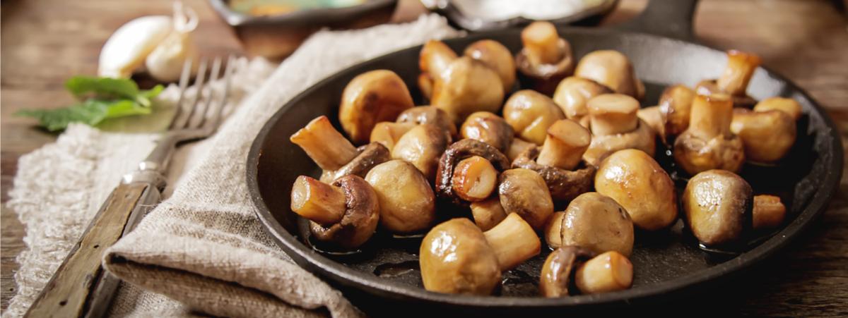 funghi ricette vegan