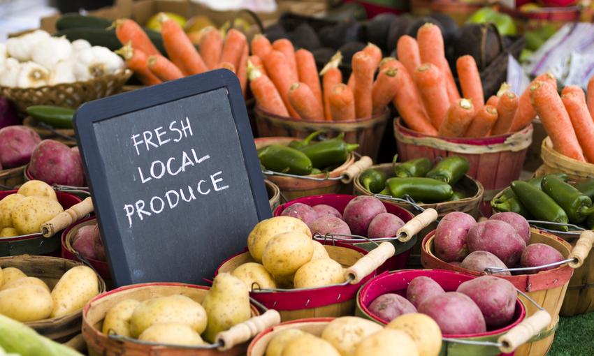 consumi italiani biologico