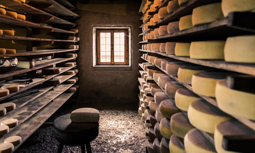 formaggi trentino alto adige