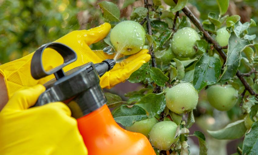 effetti dei pesticidi