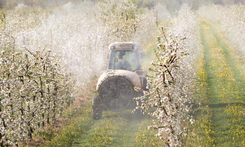 frutteto pesticidi