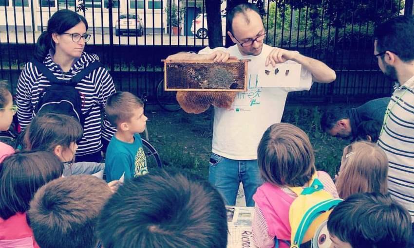 apicoltura urbana bambini