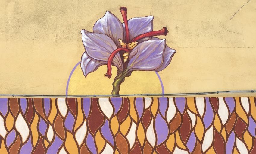murales sardegna zafferano