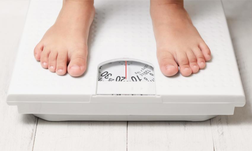 microbiota e obesità infantile