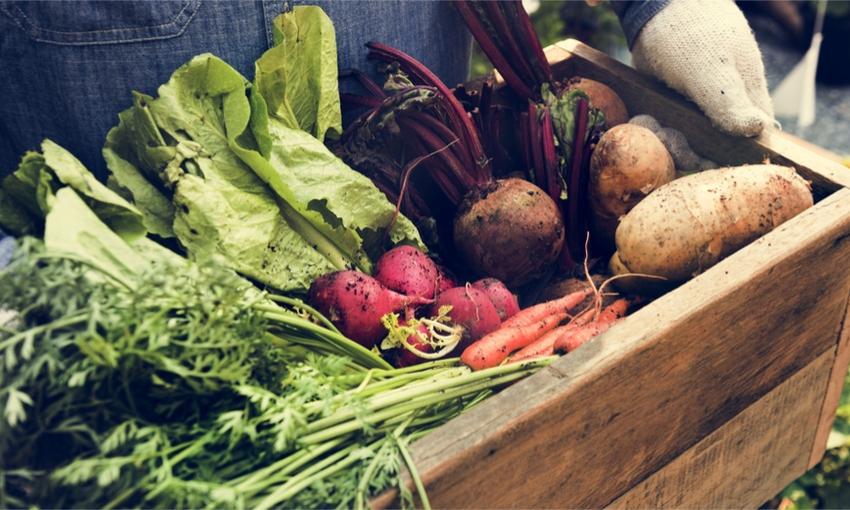 benefici cibo biologico