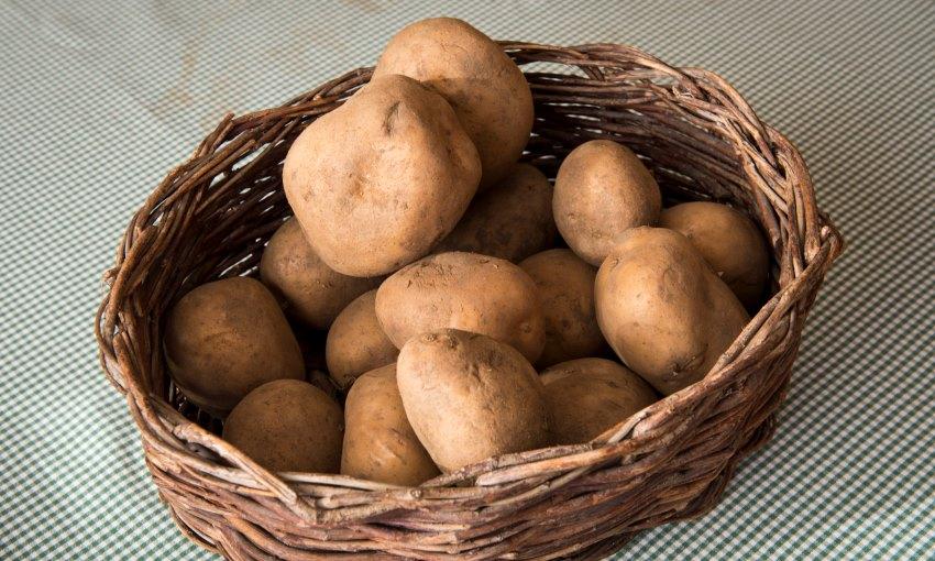 patate montagnine di lomaso