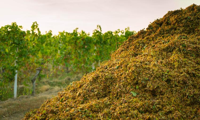 riciclare le biomasse