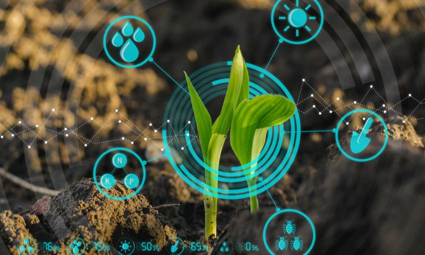 agricoltura intelligente