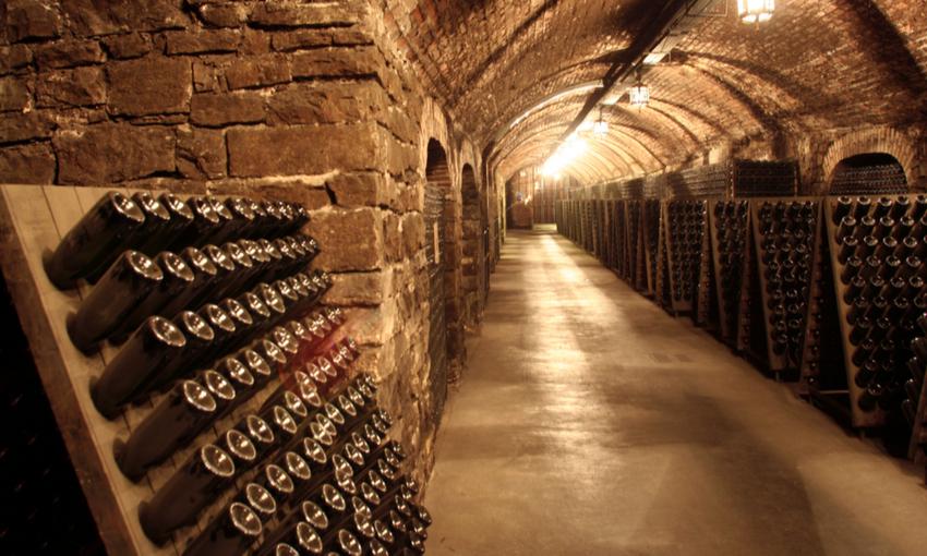 bottiglie di vino cantina