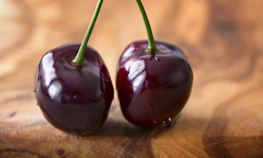 caratteristiche ciliegia di vignola