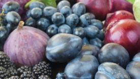 frutta viola ricerca crea