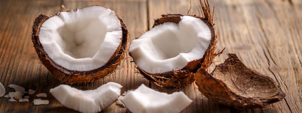 noce di cocco proprietà