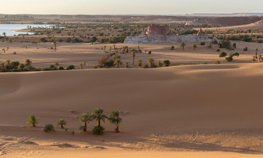 deserto africa migrazioni