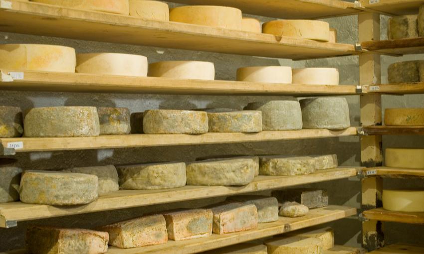 formaggi veneto