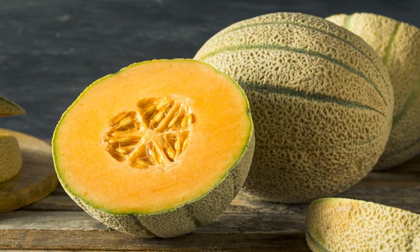 melone caratteristiche
