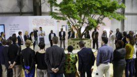 sviluppo agricolo africa fihnk