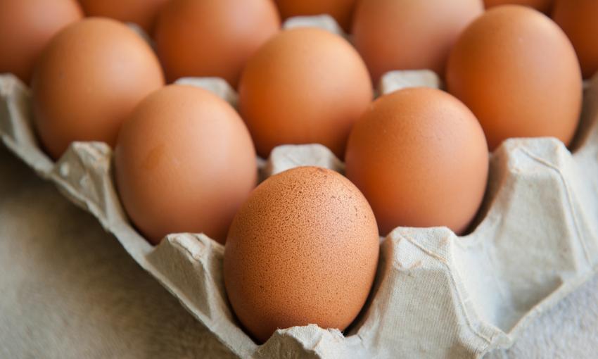 conservare le uova
