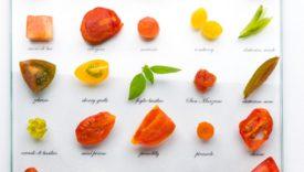 pomodoro ricette chef famosi