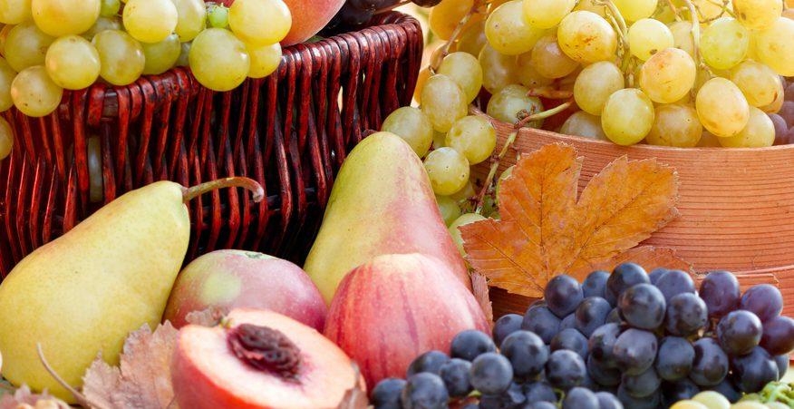 Frutta e verdura settembre