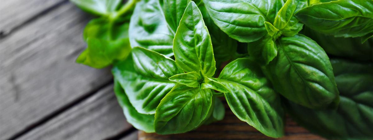 foglie di basilico su un tagliere