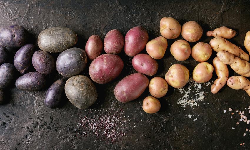 diverse varietà di patate