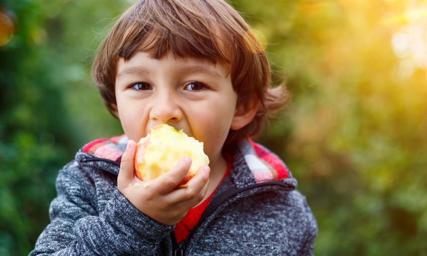 Un bambino che mangia una mela