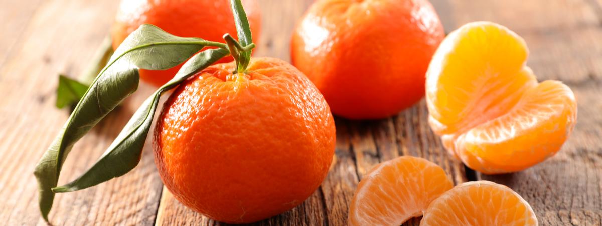 Quali sono le caratteristiche della Clementina di Calabria IGP?
